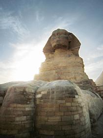 Sphinx paws