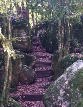 Nebias Labyrinth 2